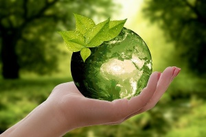 green monabanq
